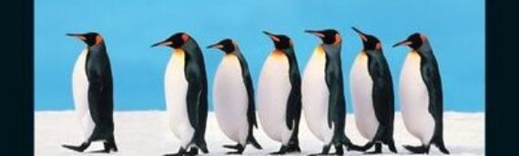 How to be an exceptional Leader – it's not really that hard!
